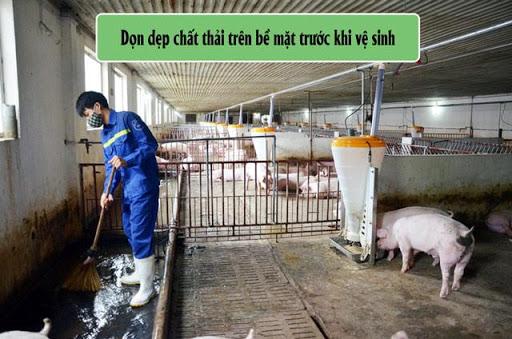 Quét dọn sàn chuồng trại trước khi phun rửa