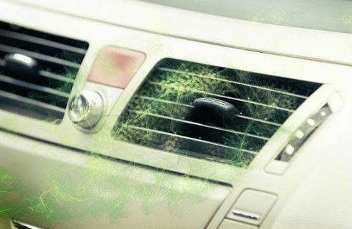 Mùi ẩm mốc điều hòa do lâu ngày không được vệ sinh