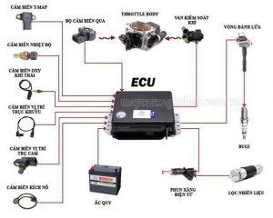 ECU điều khiển hầu hết các bộ phận trên xe